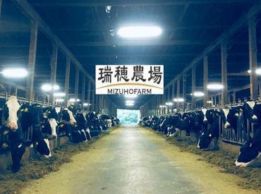 かわいい牛たちの成長が間近で感じられます◎ 「食」の大切さについても学べるお仕事です!