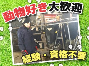 【牧場STAFF】冬休みを利用して、牧場バイトに挑戦♪かわいい牛さんに癒されます☆*体を動かして働こう♪週1日から働き方はご相談OKです◎