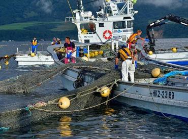 現在、28~66歳の漁師7名が 海に出られる夏を心待ちにしています。 お仕事は安全第一!基礎から丁寧にお教えします。