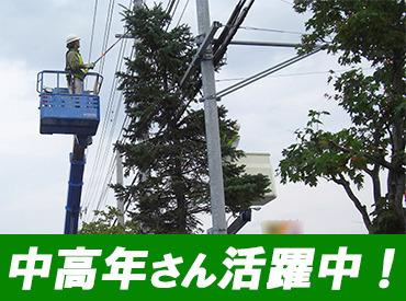 【造園、街路樹の剪定等】≪11月末までのレアバイト!男女活躍中≫「この辺の街路樹、オレが枝を刈ったんだぜ」自分の仕事がずっと残る!やりがい抜群◎