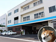 看板犬の小太郎がお出迎えします♪たくさん可愛がってくださいね★