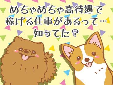 """≪無駄な出費なし♪≫旅費""""0円""""!寮も食費も""""0""""円!"""