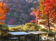 ≪熊彦≫川を渡る屋形船を眺めながら、四季折々の料理が楽しめるお店です。