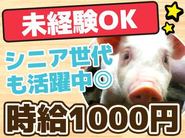 牛が多い帯広では珍しいお仕事です★ お世話する豚さんは牛ほど大きくないので 初心者さんもご安心ください♪