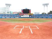 ★レア★神宮球場でのお仕事♪野球好きさんだけでなく、ワイワイ働くのが好きな方も大歓迎♪大量募集中なので、同期もたくさん◎