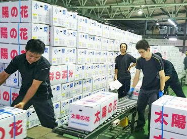 倉庫内で荷物を仕分ける、カンタンなお仕事です♪ローテーションで作業が変わるから、飽きずに働けます。