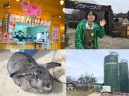 牧場の様々な動物に触れ合えるのも魅力です♪かわいい動物たちがあなたを待っていますよ!ご応募お待ちしております!