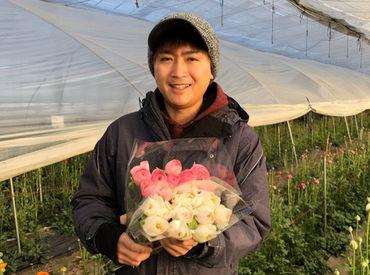 採用担当の桂です。 全国へ花と野菜を提供しています。 生産を通して、私たちと一緒に農産物の魅力を発信しましょう。