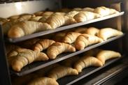 美味しパンをつくろ~♪ 生きてるパンをつくろ~♪