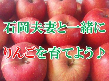 アナタの頑張りにりんごは素直に応えてくれます︕ 「りんご」と⾔っても⾊んな種類があるので⽬利きができるよう になるかも︖︕