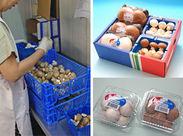 出荷作業の様子です。 収穫されたマッシュルームをパックに詰め、 ダンボールに梱包していきます*