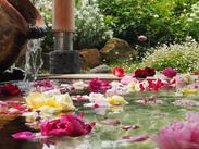 ゆったりした時間が流れるスパ・温泉施設◎オシャレな雰囲気の中でお仕事できますよ♪゜。*扶養内もOK!