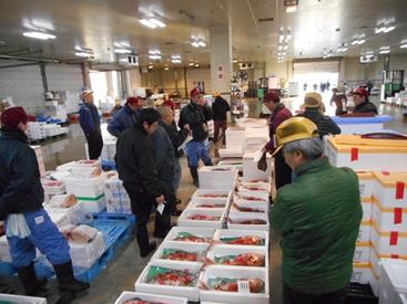 ◆岩手県盛岡市中央卸売市場水産物部◆ 私達の食卓は見えないところで 動く人がいて成り立っている。 食材の仕分けで地域に貢献!