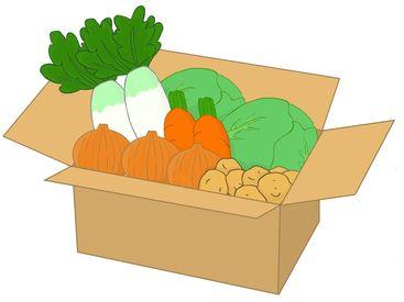 新鮮なお野菜や果物を袋に詰めるお仕事! 接客なしのモクモクWORKです♪ 車通勤OKなので行き・帰りで疲れることはありません◎
