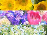 「知っている花は桜かチューリップくらい」 そんな方も安心して始められます! 活躍中のスタッフも未経験だった方が多数◎