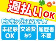<週払いOK!>時給1000円★ 簡単!人気のモクモク作業! 未経験から始めてみませんか?