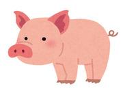 動物と接するのが好きな方やコツコツ作業するのが好きな方にオススメ♪豚との接し方などイチから教えるので安心してくださいね◎