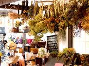 各種苗やガーデニング用品をはじめ、オーガニックのスキンケアグッス、キャンドルなどの雑貨、様々な商品に囲まれて働けます♪