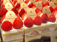 当店のお菓子はすべて砂糖・人工甘味料不使用。 はちみつ専門店ラベイユのはちみつを使い、甘味・風味を出しています。